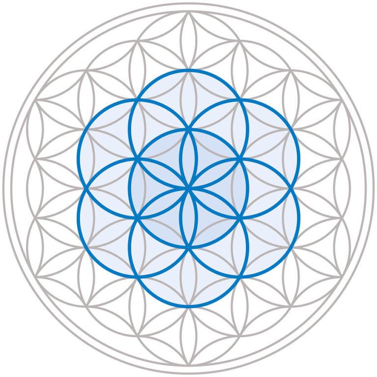 simbolo fiore della vita