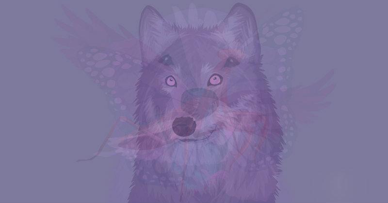 animale guida lupo