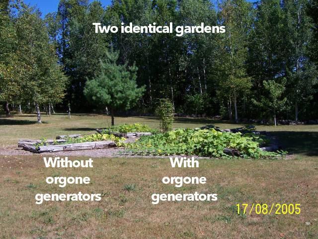 orgonite giardino